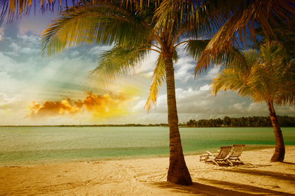 Beautiful marine landscape with tree on a pristine beach.
